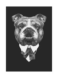 Portrait of English Bulldog in Suit Hand Drawn Illustration