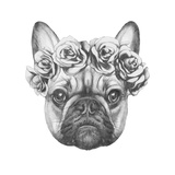 Original Drawing of French Bulldog with Roses Isolated on White Background