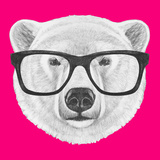 Portrait of Polar Bear with Glasses Hand Drawn Illustration