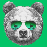 Original Drawing of Bear with Mirror Sunglasses Isolated on Colored Background