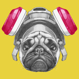 Portrait of Pug Dog with Gas Mask Hand Drawn Illustration