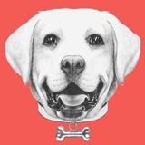Portrait of Labrador with Collar  Hand Drawn Illustration