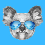 Portrait of Koala with Mirror Sunglasses Hand Drawn Illustration
