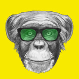 Original Drawing of Monkey with Glasses Isolated on Colored Background