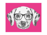 Portrait of Dalmatian Dog with Glasses Hand Drawn Illustration