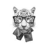 Original Drawing of Tiger with Glasses Isolated on White Background