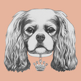 Portrait of Cavalier King Charles Spaniel Hand Drawn Illustration