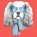Portrait of Cavalier King Charles Spaniel with Scarf and Sunglasses Hand Drawn Illustration