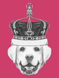 Portrait of Labrador with Crown Hand Drawn Illustration