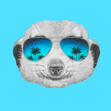 Portrait of Mongoose with Mirror Sunglasses Hand Drawn Illustration