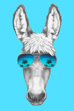Portrait of Donkey with Mirror Sunglasses Hand Drawn Illustration