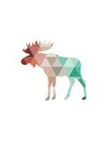 Mint Coral Moose