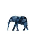 Navy Elephant Reproduction d'art par Melinda Wood