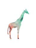Mint Coral Giraffe