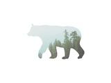 Bear Trees