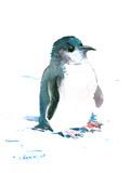 Baby Penguin 2