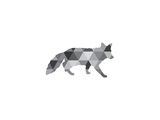 Geometric Grey Fox