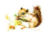 Baby Squirrel Reproduction d'art par Suren Nersisyan