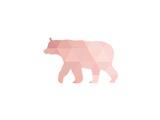 Coral Bear