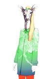Fashion Animal Watercolor Illustration