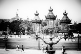 Paris Focus - Grand Palais
