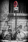 Paris Focus - No Parking