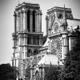 Paris Focus - Notre Dame Cathedral