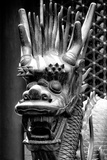 China 10MKm2 Collection - Detail of Dragon
