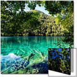 China 10MKm2 Collection - Beautiful Lake in the Jiuzhaigou National Park