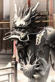China 10MKm2 Collection - Dragon - Chinese Art