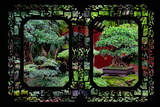 China 10MKm2 Collection - Asian Window - Bonsai Trees