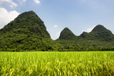 China 10MKm2 Collection - Karst Moutains in Yangshuo
