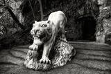 China 10MKm2 Collection - Lion - Buddhist Sculpture