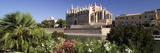 Palma Cathedral  Mallorca  Spain the Gothic Cathedral of Palma Was Built Between 1230 and 1601