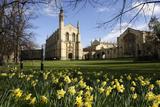 Cheltenham College  Gloucestershire