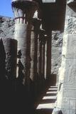 Lotus Capitals  Temple of Horus  Edfu  Egypt  Ptolemaic Period  C251 Bc-C246 Bc