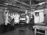 Butchery Factory  Rawmarsh  South Yorkshire  1955