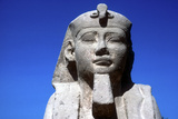 Closeup of Sphinxs Head  Temple Sacred to Amun Mut and Khons  Luxor  Egypt  C370 Bc