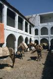 Fondouk  Chefchaouen  Morocco