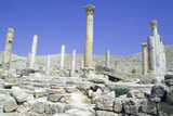 Ruins of the Ancient City of Pella  Jordan