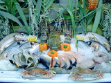 Fish Restaurant Display  Rethymnon  Crete  Greece