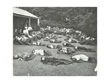 Children Resting in the Garden  Birley House Open Air School  Forest Hill  London  1908