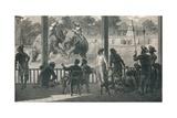 Elephant Fight at Baroda  1896