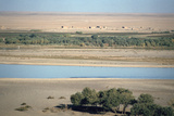 View of the River Tigris from the Ziggurat  Ashur  Iraq  1977