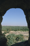 View of Siwa from Aghurmi  Egypt  1992