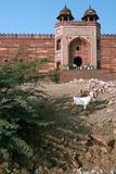 Buland Darwaza  Fatehpur Sikri  Agra  Uttar Pradesh  India