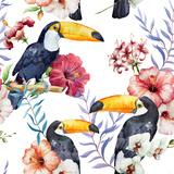 Tropics  Pattern  Toucan