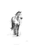 Dynamic Equestrian II