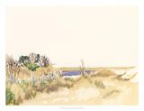Minimalist Coastline III