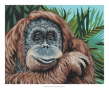 Jungle Monkey I